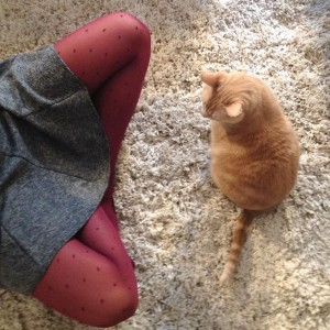 Maïka, son chat, et ses collants Minnesota My Love