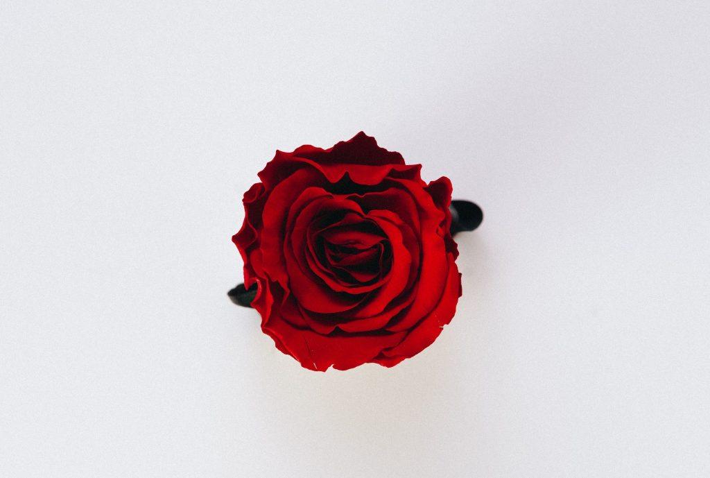 Sachets senteur à la rose